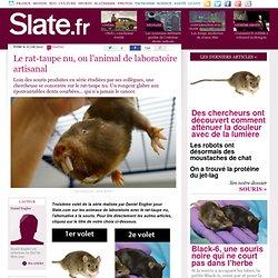 Le rat-taupe nu, ou l'animal de laboratoire artisanal