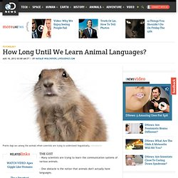 How Long Until We Learn Animal Languages?
