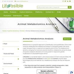 Animal Metabolomics Analysis