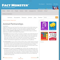 Animal Partnerships