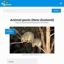 Animal Pests (New Zealand)