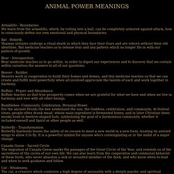 *** Animal Power Meanings ***