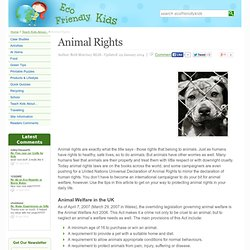 Eco Friendly Kids: Animal Rights