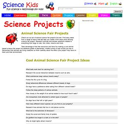 Djur pearltrees for Fishing science fair projects