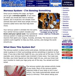 Animal Systems: Nervous System