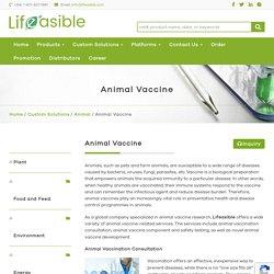 Animal Vaccine - Lifeasible
