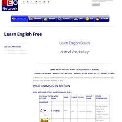 Animal Vocabulary - Learn English Basics