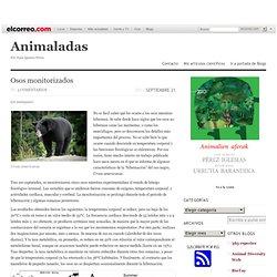 Inicio « Animaladas « Blogs El Correo