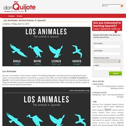 Los Animales: Animal Names in Spanish - don Quijote's Spanish Blog