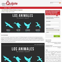 Los Animales: Animal Names in Spanish - don Quijote's Spanish Blog