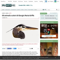 Gli animali a colori di Giorgio Maria Griffa