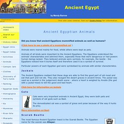 Animals of Ancient Egypt