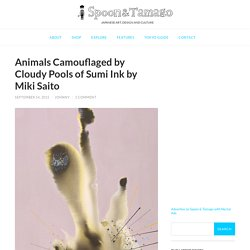 Animals Camouflaged by Cloudy Pools of Sumi Ink by Miki Saito