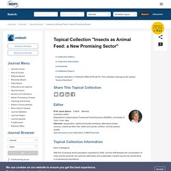 """ANIMALS - 2019 - Topical Collection """"Insects as Animal Feed: a New Promising Sector"""""""