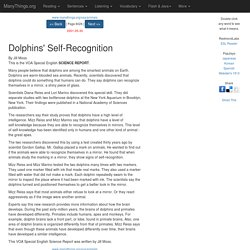 Animals: Dolphins' Self-Recognition (VOA Special English 2001-05-30)