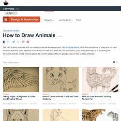 How to Draw Animals - Tuts+ Design & Illustration Tutorials