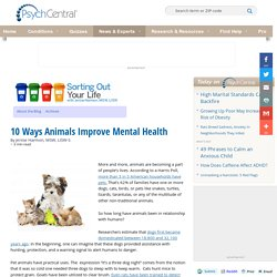 10 Ways Animals Improve Mental Health
