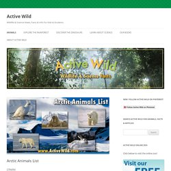 Active Wild: Arctic Animals