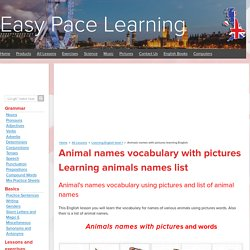 Animals names with pictures learning English
