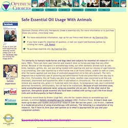 Animals and Safe Aromatherapy