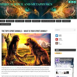 The Top 5 Spirit Animals – What Is Your Spirit Animal?
