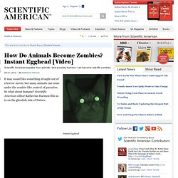 How Do Animals Become Zombies? Instant Egghead [Video]