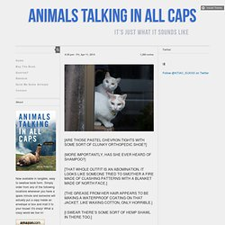 ANIMALS TALKING IN ALL CAPS - Page 1 of 66