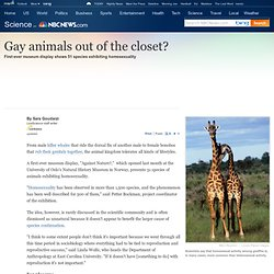 Gay animals out of the closet? - LiveScience