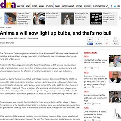 Animals will now light up bulbs, and that's no bull - Mumbai