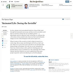 'Animated Life: Seeing the Invisible'