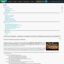 Qu'est-ce qu'Anim-fr : Création d'un réseau autour de l'animation de projets collaboratifs