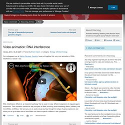 Video animation: RNA interference