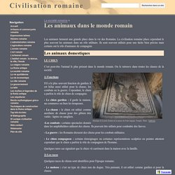 Les animaux dans le monde romain