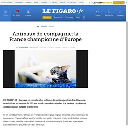 France : Animaux de compagnie: la France championne d'Europe