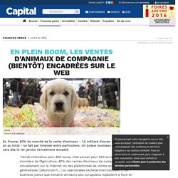 En plein boom, les ventes d'animaux de compagnie (bientôt) encadrées sur le web