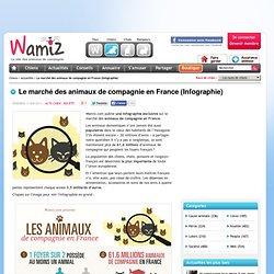 Le marché des animaux de compagnie en France (Infographie) - Société