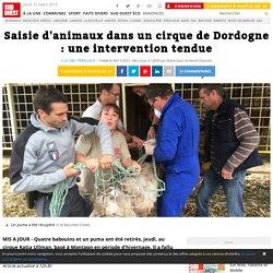 Saisie d'animaux dans un cirque de Dordogne : une intervention tendue