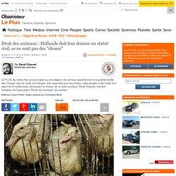 """Droit des animaux : Hollande doit leur donner un statut civil, ce ne sont pas des """"choses"""""""