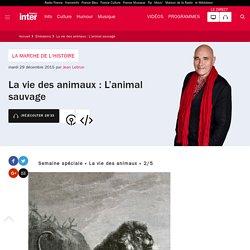 La vie des animaux : L'animal sauvage du 29 décembre 2015 - France Inter