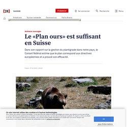Animaux sauvages – Le «Plan ours» est suffisant en Suisse