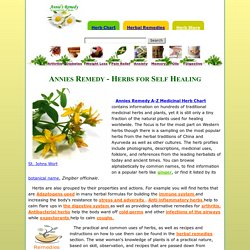 Annie's Remedy Medicinal Herbs and Healing Oils