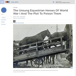 100th Anniversary Of U.S. Entering WWI: Equestrian Heroes Of World War I And The Plot To Poison Them
