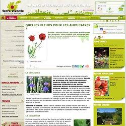 Cinq annuelles magiques pour un jardin écologique !