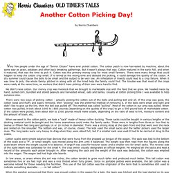 Another Cotton Picking Day! by Norris Chambers (Old Timer's Tales)