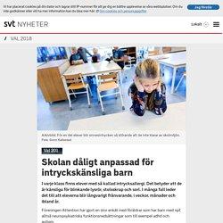 Skolan dåligt anpassad för intryckskänsliga barn