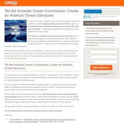 Tell the Antarctic Ocean Commission: Create an Antarctic Ocean Sanctuary