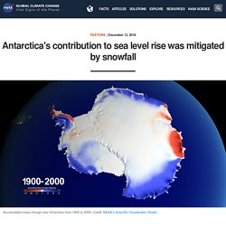 Antarctica's contribution to sea level rise was mitigated by snowfall