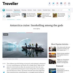 Antarctica cruise: Snorkelling among the gods