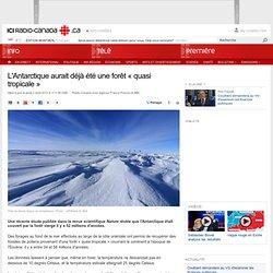 L'Antarctique aurait déjà été une forêt « quasi tropicale »