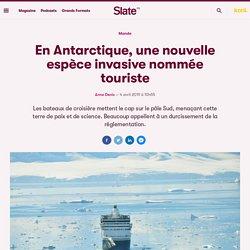 En Antarctique, une nouvelle espèce invasive nommée touriste